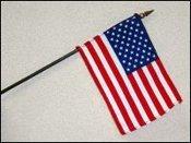 usa stick flags