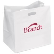 carry out bag